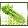 Commande en ligne céleri livraison panier fruits et légumes à domicile à nice