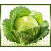 Commande en ligne chou vert frisé livraison panier fruits et légumes à domicile à nice