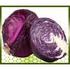 Commande en ligne chou rouge livraison panier fruits et légumes à domicile à nice
