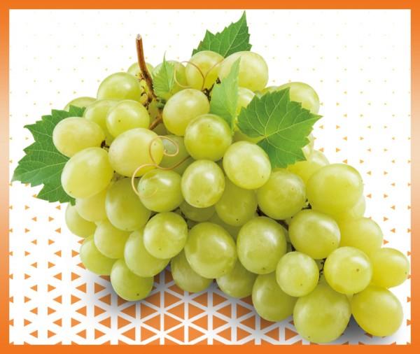 commande en ligne raisin blanc livraison primeur à domicile à nice