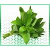 Commande en ligne plantes arômatiques menthe fraiche livraison panier fruits et légumes à domicile à nice
